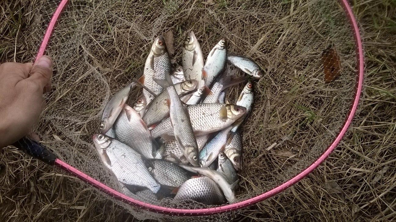 тверских рыболовов